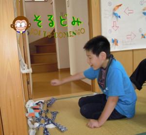 20119blog6