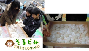 20121blog6